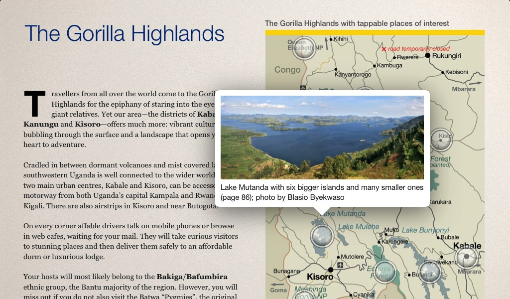GorillaHighlands - Photo 4