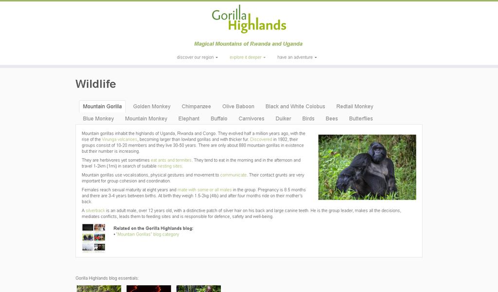 GorillaHighlands - Wildlife