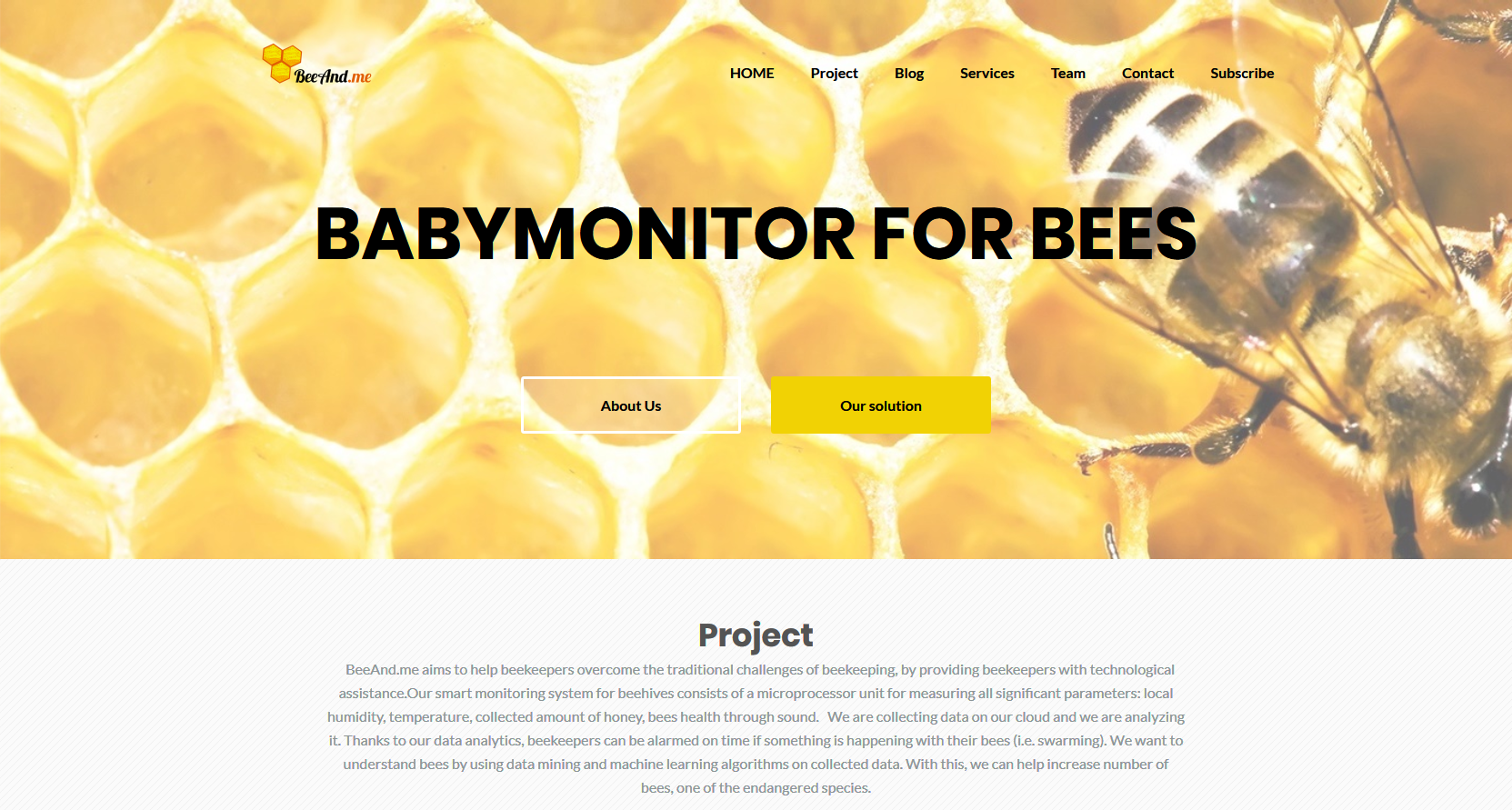 BeeAndMe - Web
