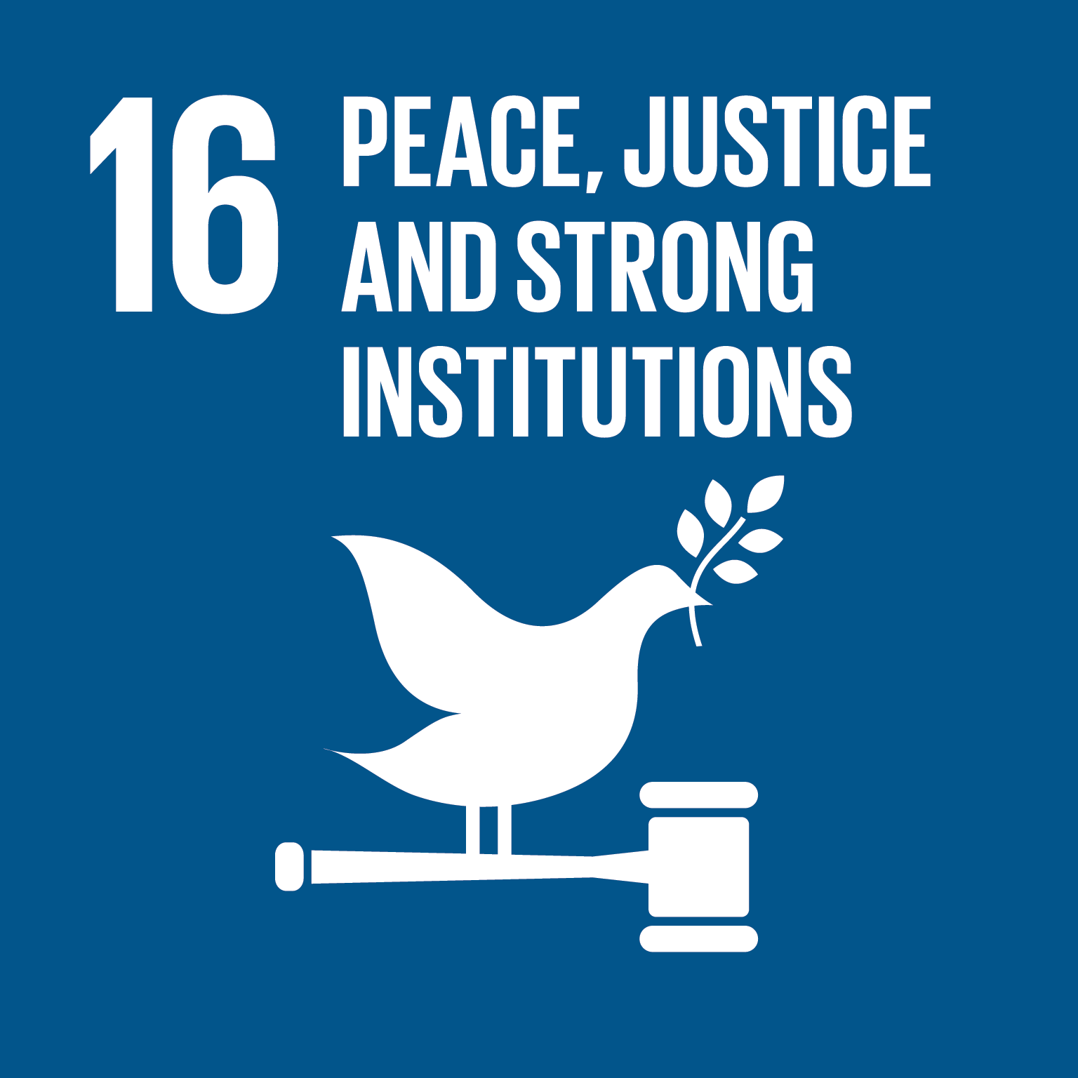 16 Peace, Justice and Strong Institutions