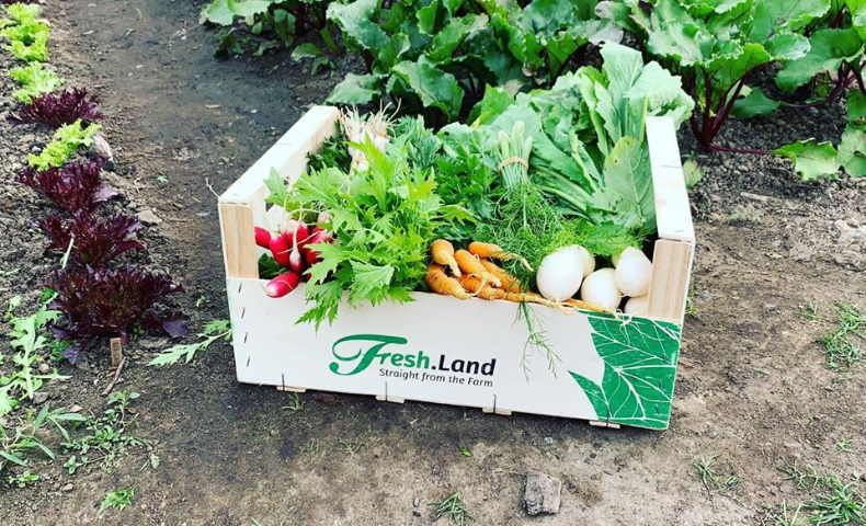 fresh-land-collect