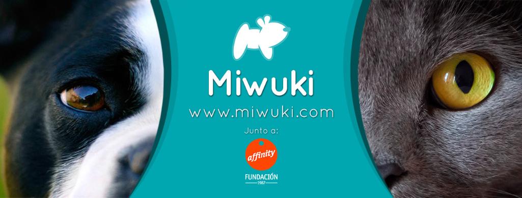 miwuki-cat-dog
