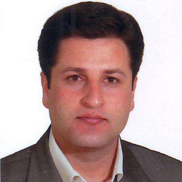 Mehdi Bizolm